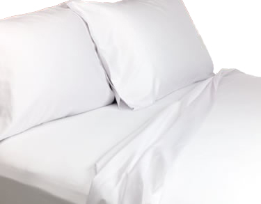 T180 - Eurocale Twin Fitted Sheets - 39x75x10 - White